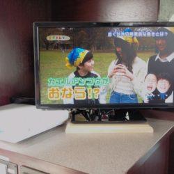 地デジTV&DVD